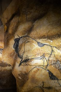 Caverne de Vallon Pont d'Arc en Ardèche, France