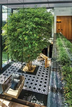 Love this open and airy space with that large tree planted indoors with swinging chairs hanging from a black trellis