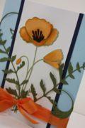 California Poppy    Perky Poppy from Memory Box