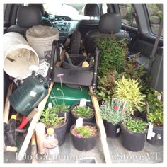 A van load of tools and flowering plants to put in the ground, making our outdoor spaces pretty!