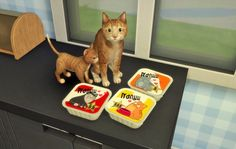 Budgie2budgie: Little Cat Food Set • Sims 4 Downloads