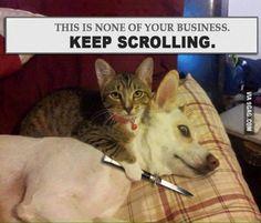 Keep Scrollin.