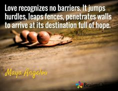 Love recognizes no barriers. It jumps hurdles, leaps fences, penetrates walls to arrive at its destination full of hope. / Maya Angelou