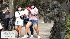 Leaf Man, Japan Guide, Skater Skirt, Leaves, Fashion, Princesses, Moda, Fashion Styles, Skater Skirts