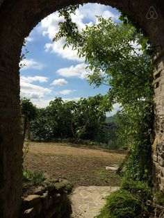 Looking out from the ancient spraying onto some fig trees.