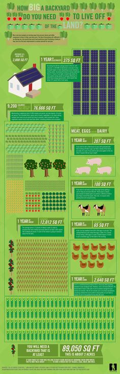 So have you ever wondered how much land you need to grow one years worth of food?  Well here is your answer..!