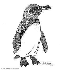 The rarest and most endangered species in the world, are the only penguins that can be found at the equator. Unlike most cold water penguins, they have several adaptations that. Penguin Sketch, Penguin Drawing, Penguin Tattoo, Penguin Art, Christmas Tree Zentangle, Galapagos Penguin, Easy Drawings, Doodle Art, Art Forms