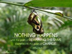caterpillar to butterfly transformation quotes - Google Search