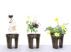Flower pots for odd spaces :) - ~ & gardens~ - Design RatBalcony Plants tan Furniture