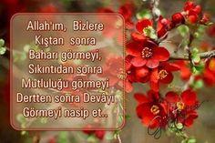 Allahim sen bize nasip et ~ Kuaza