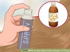 Image titled Use Apple Cider Vinegar for Dogs Step 9