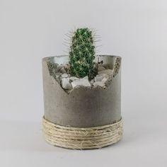 Cement Design, Cement Art, Cement Crafts, Concrete Projects, Concrete Planters, Planter Pots, Cactus Flower, Flower Pots, Flowers