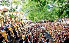 The famous ilanjithara melem in traditionally performed in the shades of the ilanji tree inside the Vadakunathan temple starts at 2'O clock. The Melam is a musical performance by a group of experienced musicians and it is performed using drums, trumpets, pipe and cymbal. The performance is divided into 3 kalams, based on the speed and the third is the fastest and most explosive in nature.
