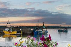 Family run Townhouse hotel and Seafood Restaurant Youghal on the beautiful sunny south east coast of Ireland. Ideal if you're looking for a hotel in Youghal. Hotel Breaks, Blue Books, East Coast, Spring Time, Townhouse, Cork, Ireland, Restaurants, Hotels