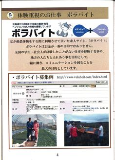 4ページ:ボラバイト紹介