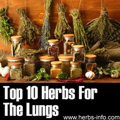 ❤ Top 10 Herbs For The Lungs ❤