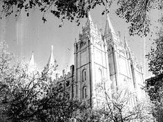 More pics of LDS temples