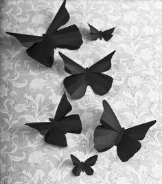 1000 Images About Black Butterflies On Pinterest Butterflies Black