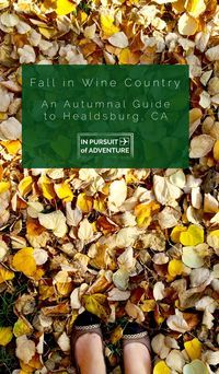 Fall in Wine Country | An Autumnal Guide to Healdsburg, CA  Healdsburg is our favorite town in Sonoma County.  Find out what we think is essential to experience during fall including where to eat, seasonal cupcakes and ice cream, local ciders, fall events