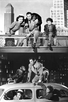 Johnny Weissmuller, Maureen O'Sullivan & Johnny Sheffield in Tarzan's New York Adventure (1942)