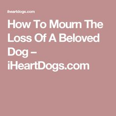 How To Mourn The Loss Of A Beloved Dog – iHeartDogs.com
