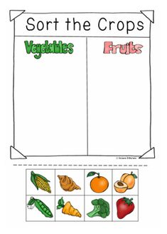 $6. Sort the Crops from a Farm into two groups vegetables or Fruits. This is part of a Community Helpers Unit all about Farmers.