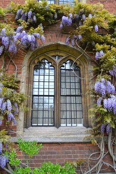 Image from http://1.bp.blogspot.com/-XutH-6AyD04/U4eWa8jx0wI/AAAAAAAAI6o/ezCouPJpI3s/s1600/Cambridge+5+058.JPG.