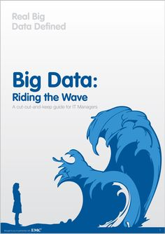 Big Data: Riding the Wave | A Guide for IT Managers
