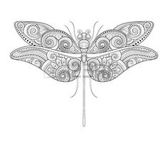 ornate dragonflies: Vector Decorative Ornate Dragonfly. Monochrome Illustration of Exotic Insect. Patterned Design Element Illustration