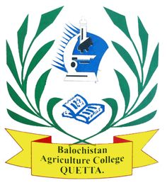 Balochistan Agriculture College Quetta Pakistan, Quetta Agriculture Collage Quetta, List of Quetta Collages , Top Quetta Universities and Collages