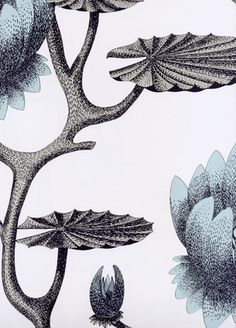 Summer Lily wallpaper from Cole and Son