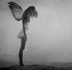 angel try to fly Marcio Ismael