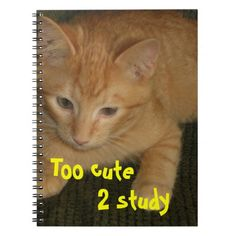 """Kitty """"Too cute 2 study"""" Notebook"""