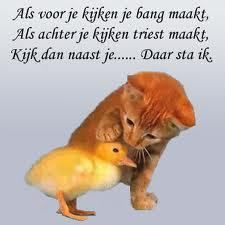 """Thank you to my friend, @Jolanda Mook for translating this for me!  The Dutch language is so beautiful! """"If looking ahead makes you scared, if looking back makes you sad, then look beside you.. I'll be there"""""""