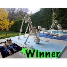 The original Pose-N-Stay skeleton by Seasons. A fun decorative halloween decoration Halloween Prop, Halloween Outside, Halloween Yard Decorations, Outdoor Halloween, Halloween 2019, Holidays Halloween, Halloween Crafts, Halloween Costumes, Happy Halloween