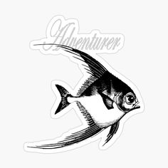 'Adventurer The Fish' Sticker by Beer-Bones Adventurer, Sticker Design, Just Go, Bones, Fish, Stickers, Art Prints, Printed, Awesome
