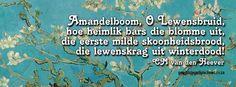 CM van den Heever #Afrikaans #gedigte Afrikaans, Den