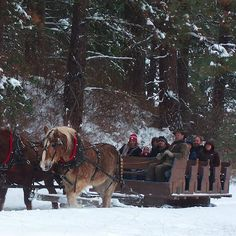 Winter sleigh rides Leavenworth, WA  (800.678.4512 for reservations)