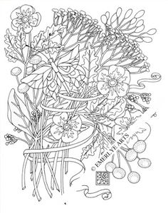 queen anne butterfly an adult coloring page