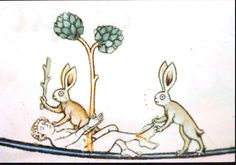 Medieval - Animal - Animal acting human - Rabbits beating up man
