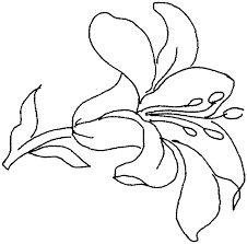 """Képtalálat a következőre: """"virág rajzok"""""""
