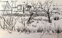 Orchard pen and ink on paper