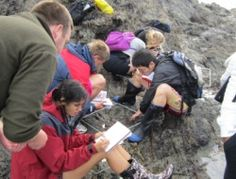 Marine biology students doing research.