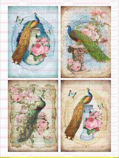 A4 4 Vintage Pfau Vogel Label Bügelbilder Shabby von Doreen`s Bastelstube  - Kreativ & Außergewöhnlich auf DaWanda.com