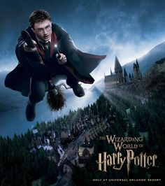 Wizarding World of Harry Potter, Orlando, FL - This could be a trip all on it's own! Heaven on Earth for Fletcher!