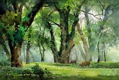 Acrylic Landscape Painting Gallery | WATERCOLOUR PAINTINGS LANDSCAPES - Paintings Gallery