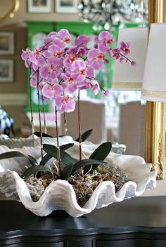 Flowers Drawings Inspiration : Decorating with Orchids and a Great Trick for Growing ThemThe Creativity Exchang Orchid Flower Arrangements, Orchid Planters, Orchid Centerpieces, Orchid Pot, Fall Planters, Indoor Orchids, Orchids Garden, Indoor Plants, Flowers Garden