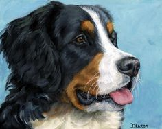 Bernese Mountain Dog On Blue Painting by Dottie Dracos