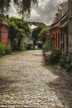 Ribe Denmark- Beautiful little town with the friendliest people I have encountered