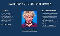 Tantrums v. Autism Meltdown We had a meltdown today. Aspergers Autism, Asd, Autism Signs, High Functioning Autism, Sensory Integration, Autism Spectrum Disorder, Special Needs Kids, Behavior Management, Autism Awareness
